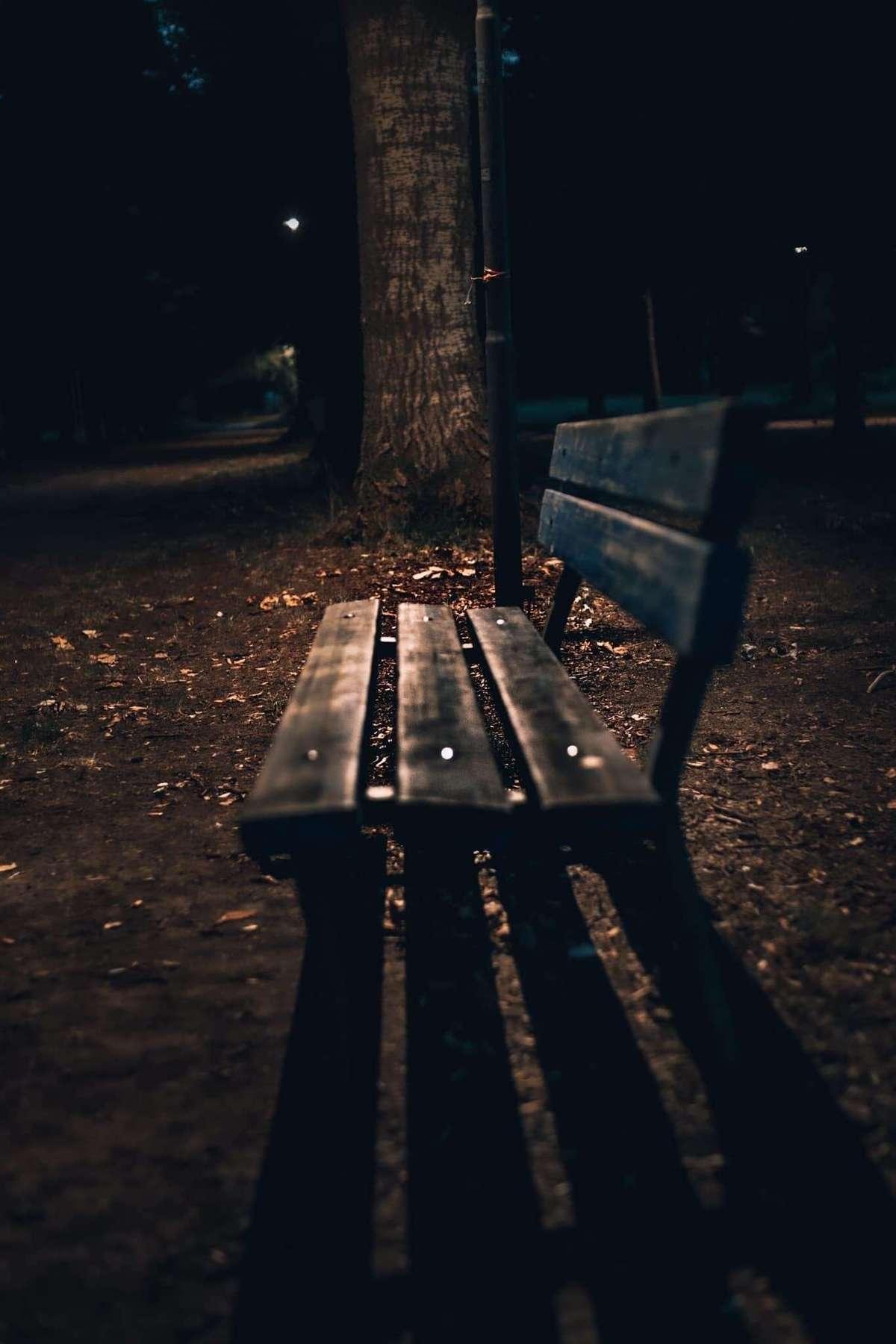Wieczór w Parku Modrzewie