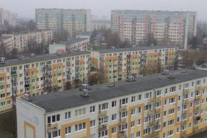 Mieszkańcy bloków przy ul. Pstrowskiego i Dworcowej wyciągają martwe ptaki z kanałów wentylacyjnych