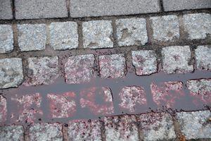 Zakrwawiony mężczyzna szedł ulicą Grunwaldzką w Olsztynie. Uciekał przed partnerką