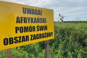 ASF w powiecie bartoszyckim. Jak jest?