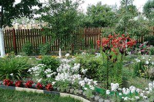 Najpiękniejszy ogród jest w Radziszewie