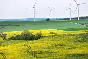 Farma wiatrowa przygotowuje inwestycję