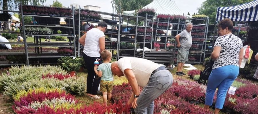 Jesienne targi ogrodnicze w Starym Polu odbyły się w dniach 11-12 września