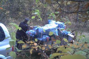 Wpadł w fotopułapkę, gdy śmiecił w lesie