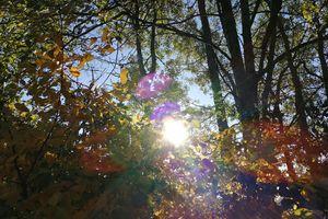 NieboLema:  jesienne słońce nad Mazurami