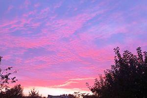 NieboLema: różowe niebo