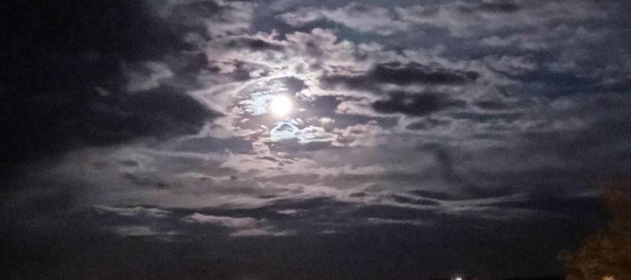 - Im pełniej człowiek poznaje świat, tym bardziej nieobjęte otwierają się przed nim horyzonty - Stanisław Lem, Astronauci.